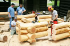 ISBA School -  Building with Logs